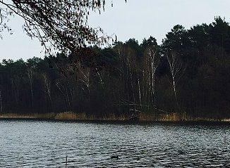 See und Wald
