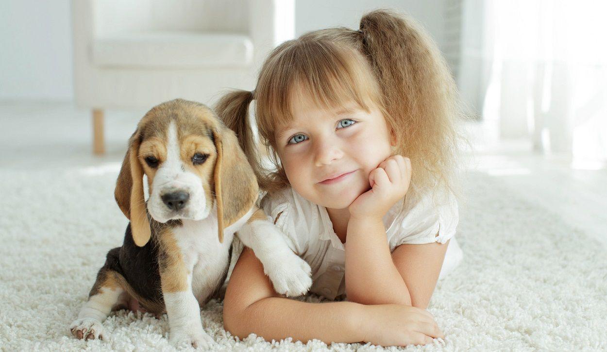 Haustiere Kinder
