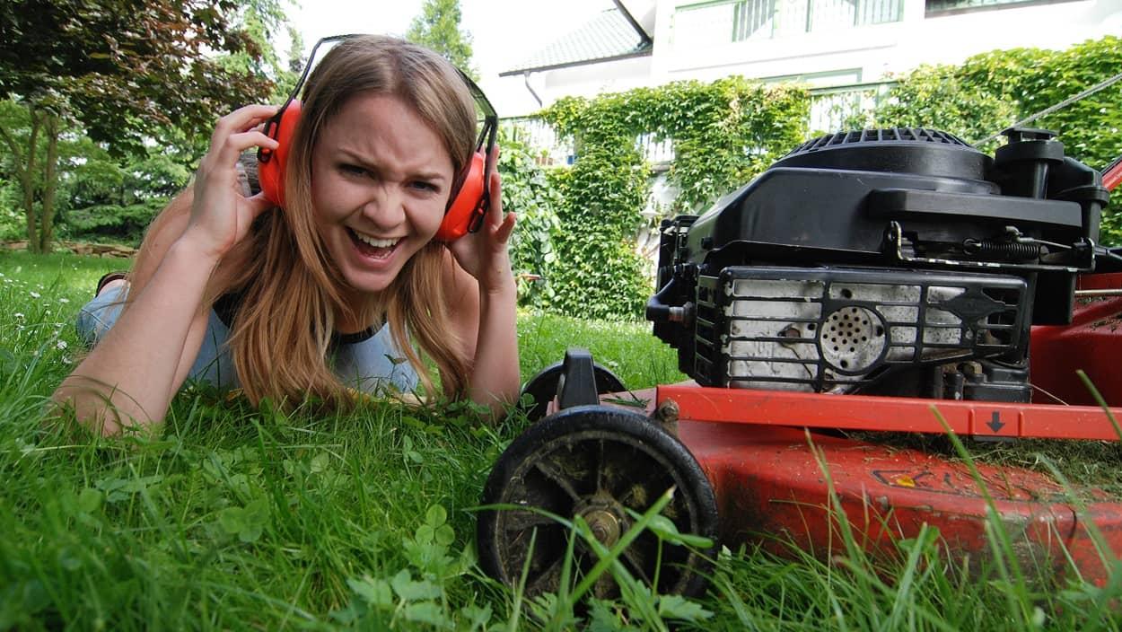 Larm Im Garten Gartenarbeit Party Streit Mit Dem Gartennachbar